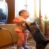 親猫と赤ちゃんの子猫争奪戦!その結果は・・・?!