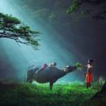 物語のように美しい世界の子供たち!遊ぶ風景32選